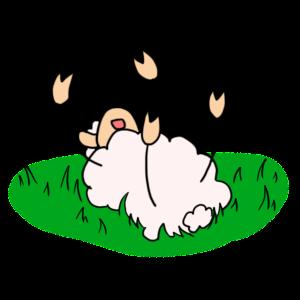 Mouton2SurLeDos