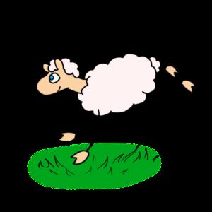 Mouton2Saute