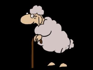 moutons2_vieux